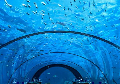Take a Look at the Best Underwater Restaurants in the World best underwater restaurants Take a Look at the Best Underwater Restaurants in the World underwater restaurants Hurawalhi 511 500x350